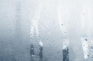 Páracsík az ablakon