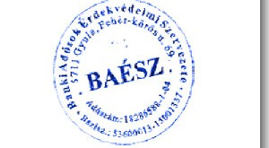 baesz-pecset-300
