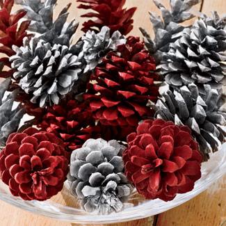 55003f11a512e-spray-painted-pine-cones-fb
