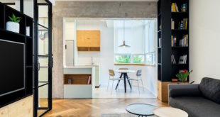 Live-work-apartment-in-Israel-corner-shelves-and-kitchen