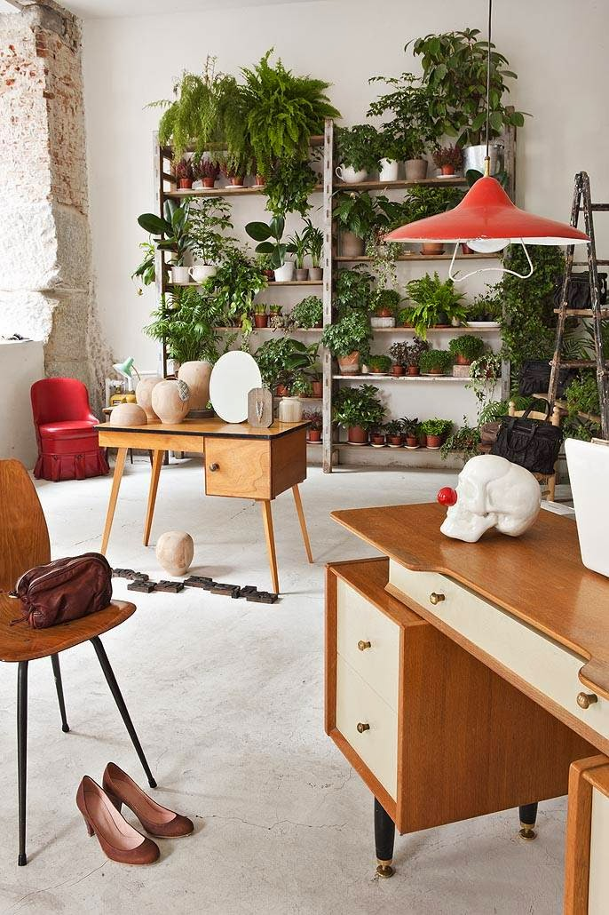bookshelf-herbs