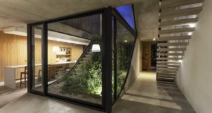 The-MeMo-House-has-an-interior-garden-that-connects-all-floors