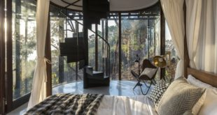 architecture-tree-house